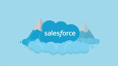 A Beginner In Salesforce?