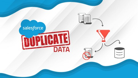 How To Manage Duplicate Records In Salesforce?