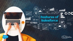 What are the Salient Features of Salesforce?